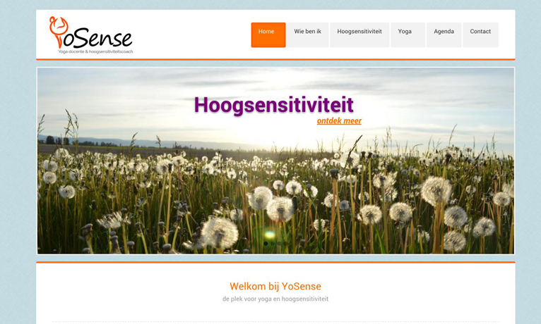 Yosense – Website